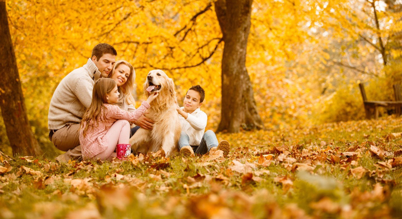 Image of a relaxed family of 4, two adults and two children, and their dog in a fall outdoor scene.